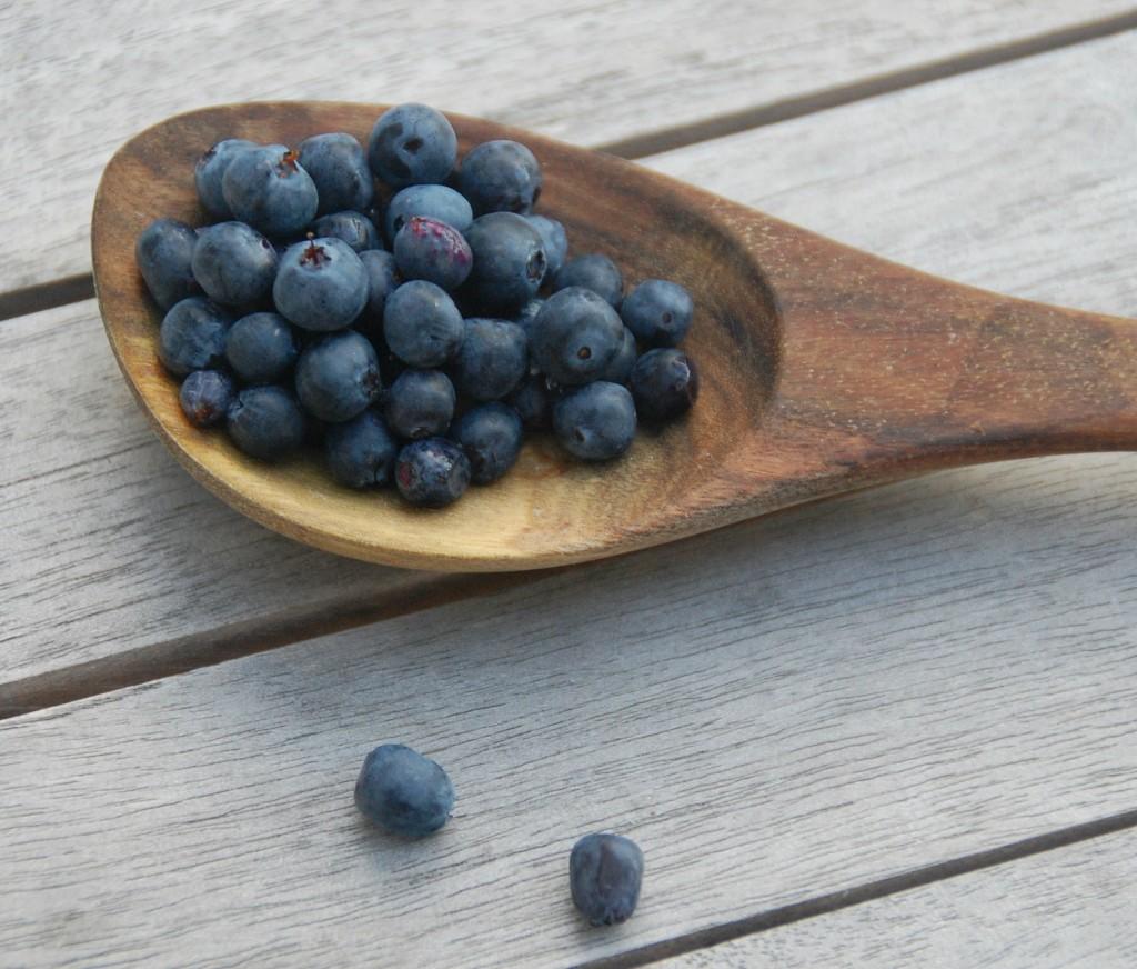 Blåbærsyltetøj lavet af vilde blåbær