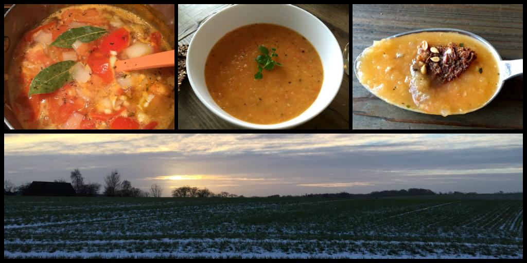 Lav din egen sunde tomatsuppe