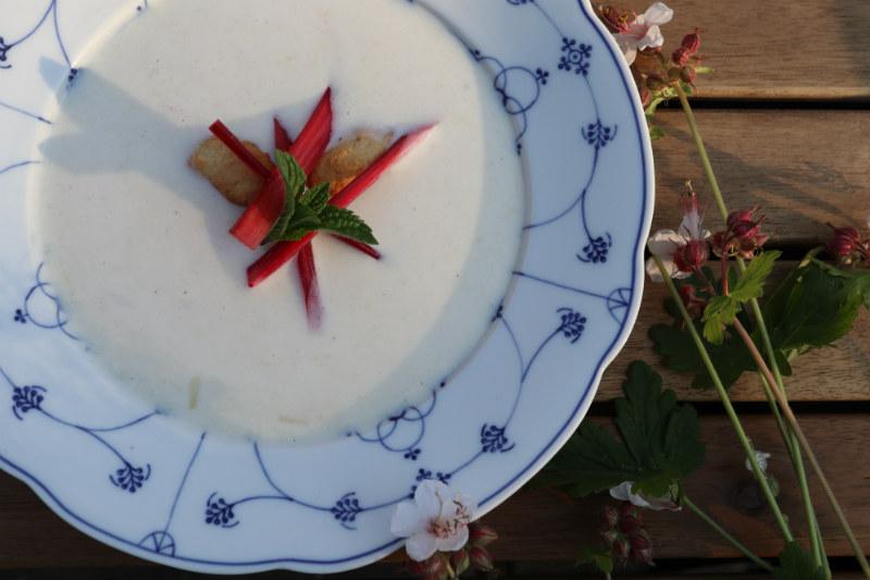 Hjemmelavet iskold rabarberkoldskål