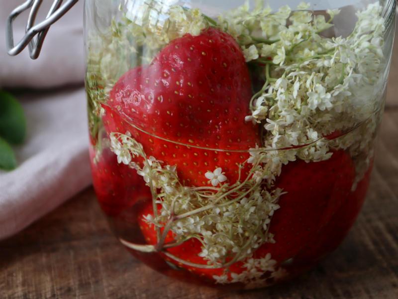 Lav din egen hyldeblomst-jordbærsnaps