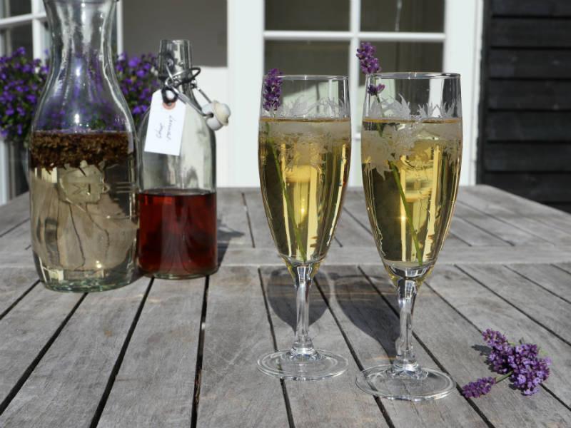 Velkomstdrink med Asti og lavendelsnaps