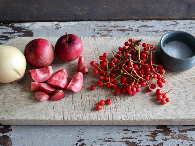 Rønnebærkompot med æbler