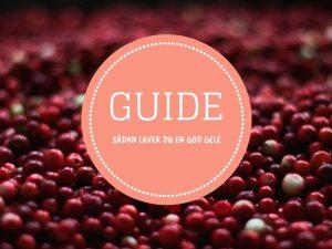 Guide: Sådan laver du en god gelé