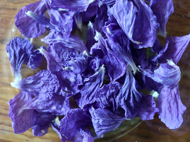 Tørrede kronblade fra storkenæb