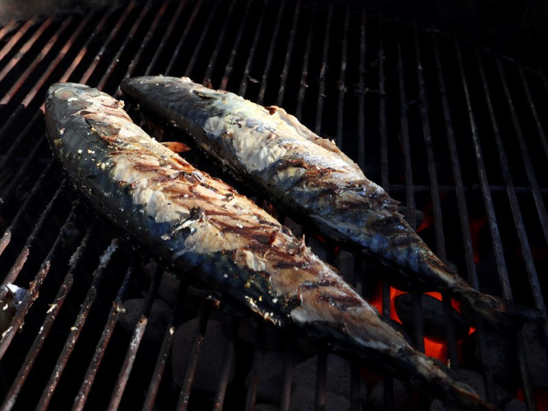 Makreller på grillen